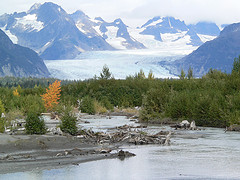 Alaska CPA CPE requirements